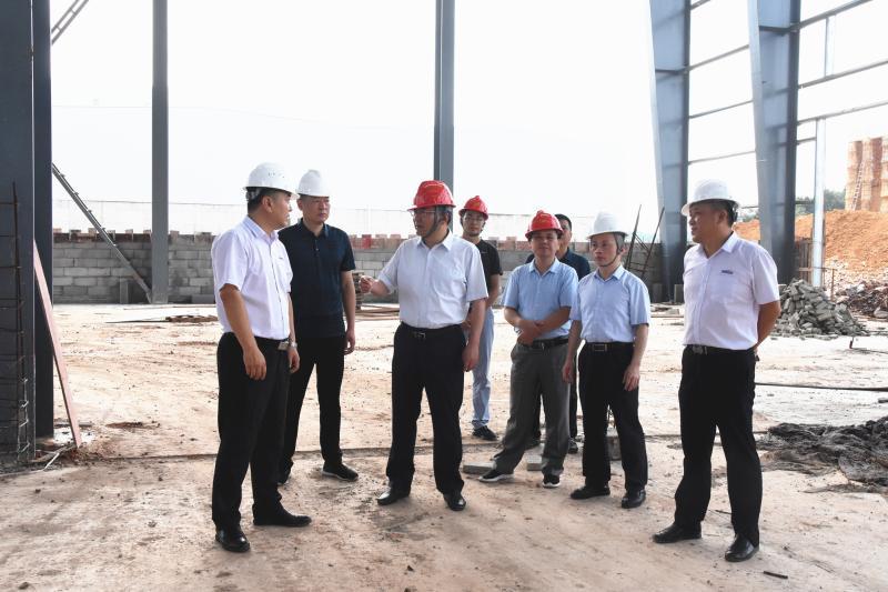 陆应平到十里铺乡督导重点项目建设、文明创建、社会治理工作