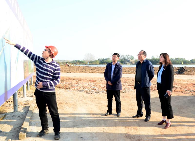 陆应平深入海口镇、集贤路街道调研重点项目建设情况